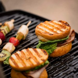 Best Portable Gas Grill